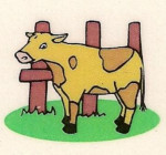 Caissette de veau