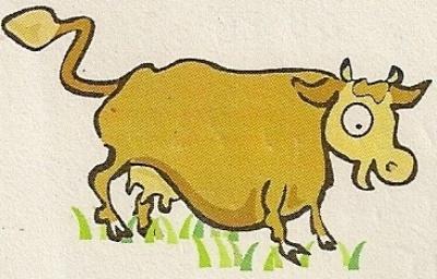 Caissette de Vache «Elevage Biologique»
