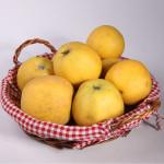 Pommes «Chantecler» Sachet de 2 kg