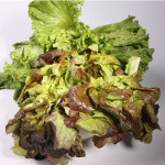 Les salades vertes